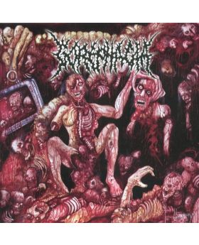 GOREPHAGIA/BEAUTICIAN - Split - CD